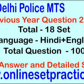 Delhi Police MTS Question Previous Year
