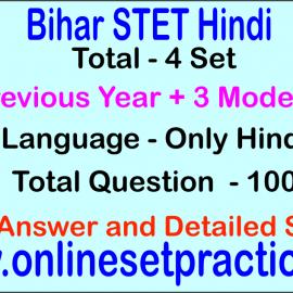 Bihar STET Hindi Online  Test Series